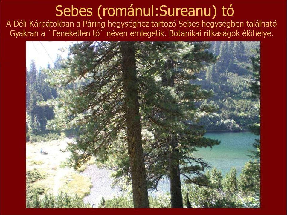 Sebes (románul:Sureanu) tó