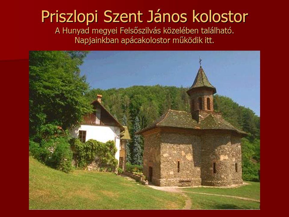 Priszlopi Szent János kolostor A Hunyad megyei Felsőszilvás közelében található.