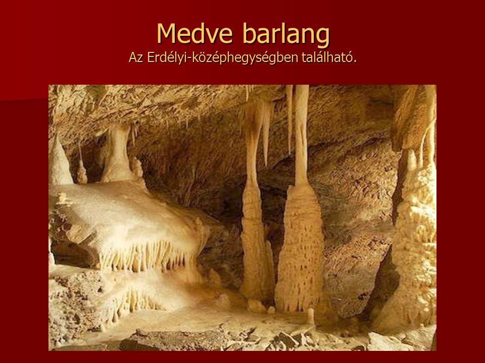 Medve barlang Az Erdélyi-középhegységben található.