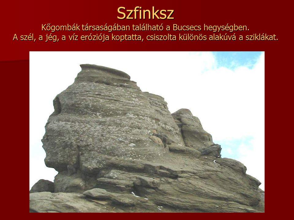 Szfinksz Kőgombák társaságában található a Bucsecs hegységben