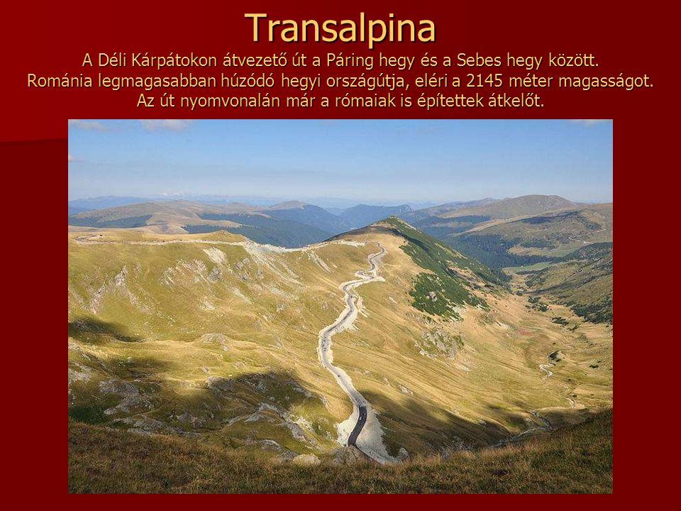 Transalpina A Déli Kárpátokon átvezető út a Páring hegy és a Sebes hegy között.