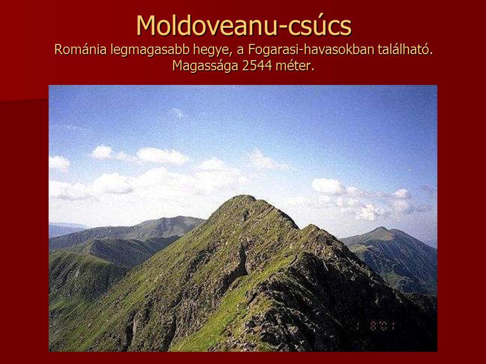 Moldoveanu-csúcs Románia legmagasabb hegye, a Fogarasi-havasokban található. Magassága 2544 méter.