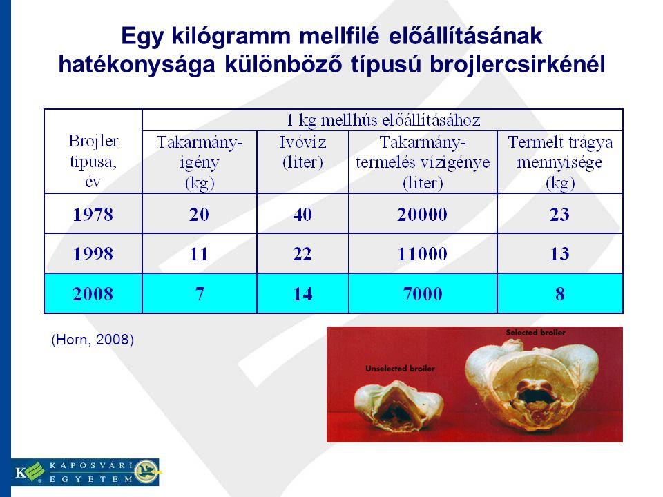 Egy kilógramm mellfilé előállításának hatékonysága különböző típusú brojlercsirkénél