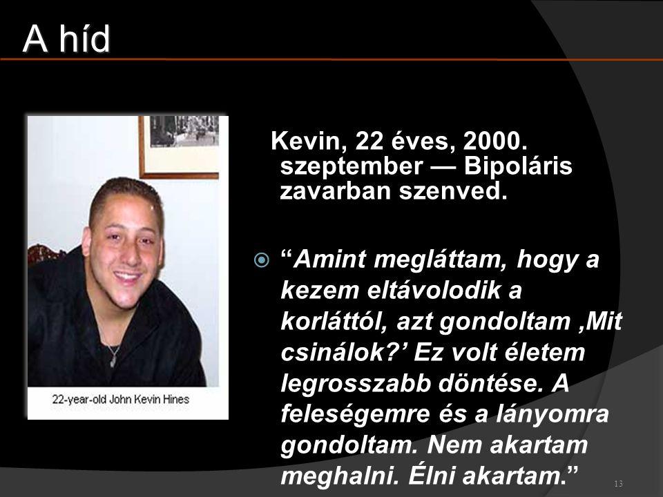 A híd Kevin, 22 éves, 2000. szeptember — Bipoláris zavarban szenved.