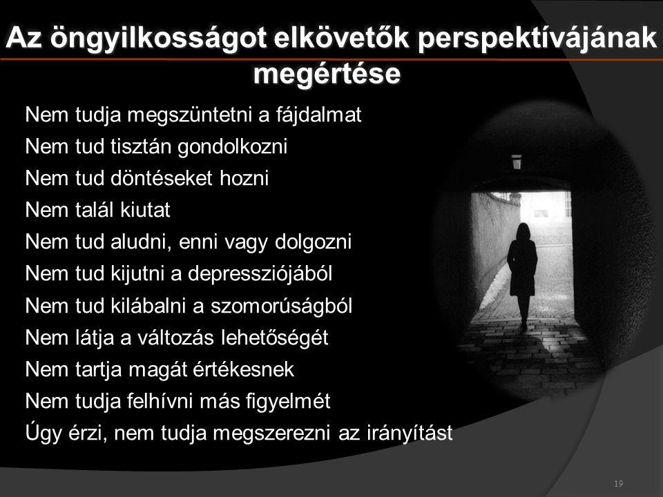 Az öngyilkosságot elkövetők perspektívájának