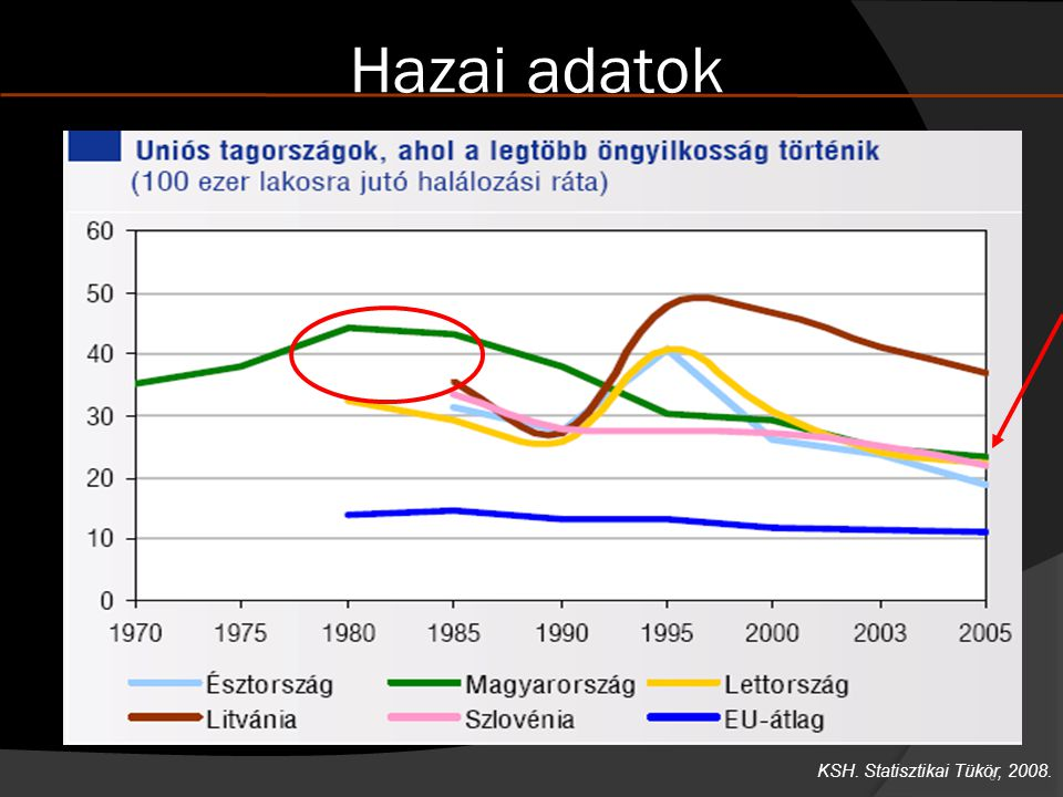 Hazai adatok KSH. Statisztikai Tükör, 2008.