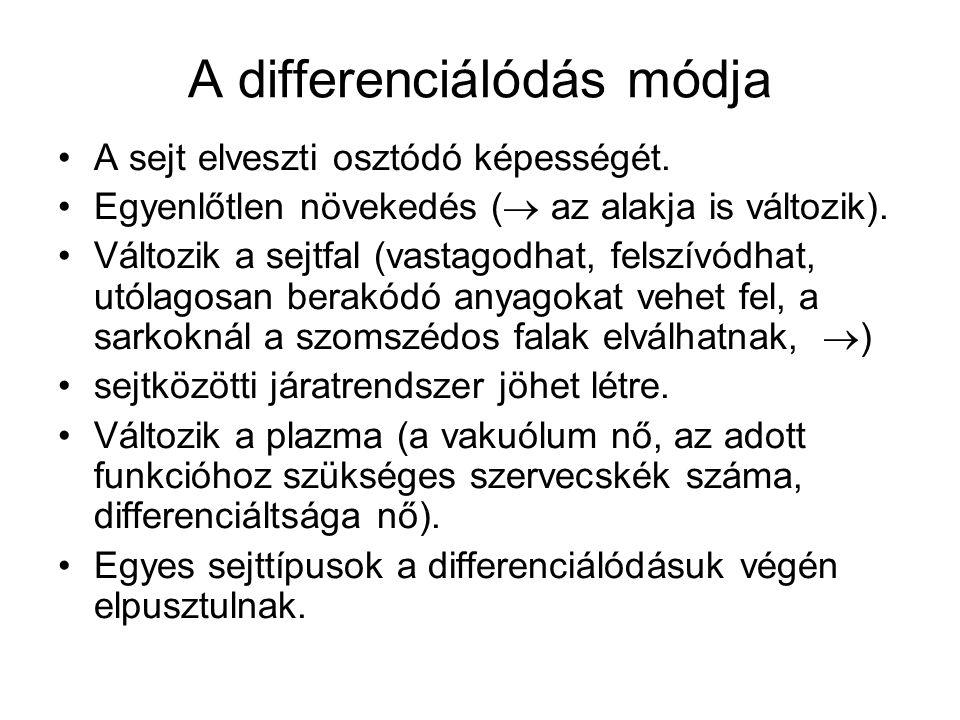 A differenciálódás módja