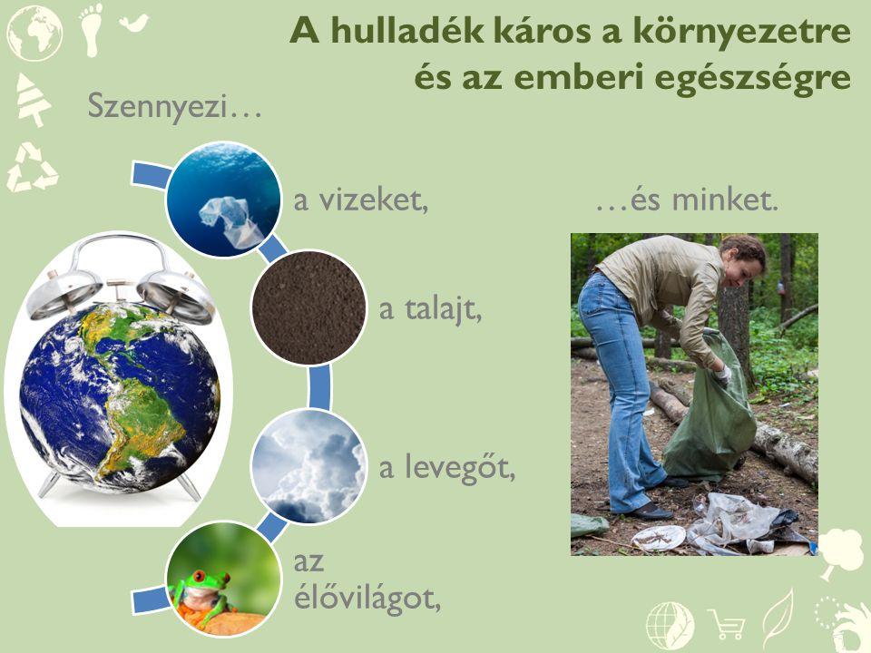 A hulladék káros a környezetre és az emberi egészségre