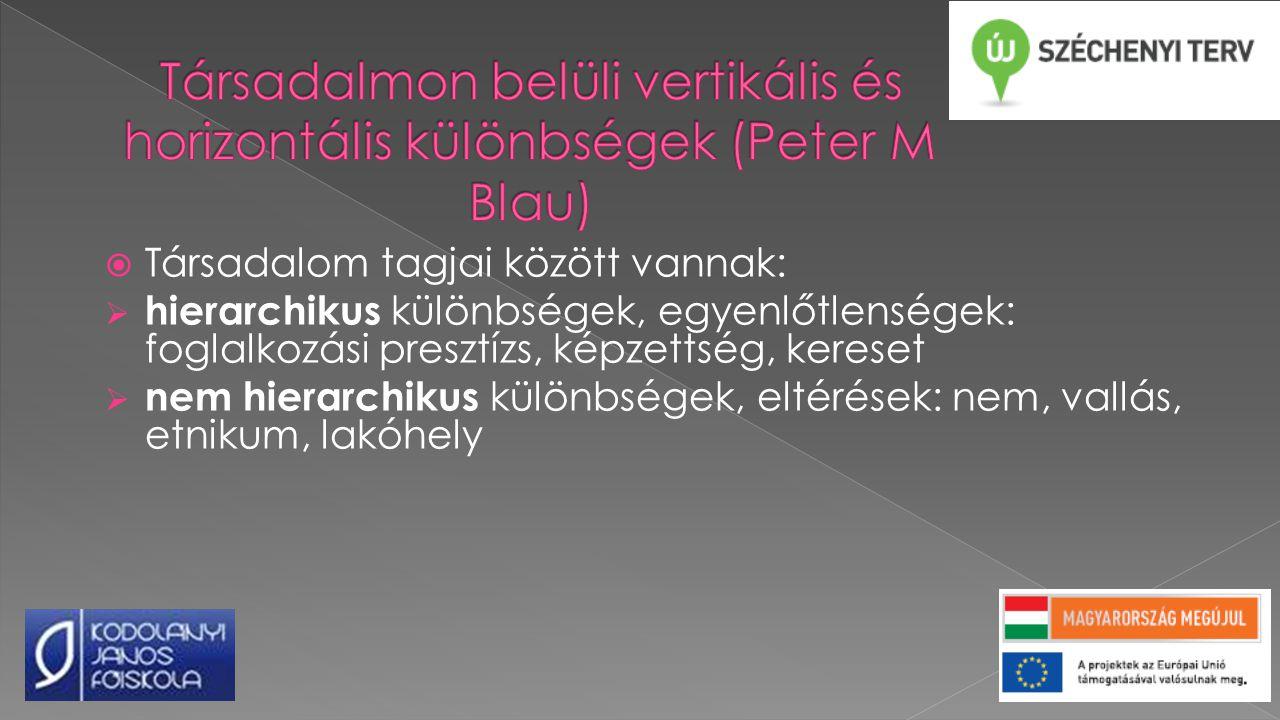 Társadalmon belüli vertikális és horizontális különbségek (Peter M Blau)
