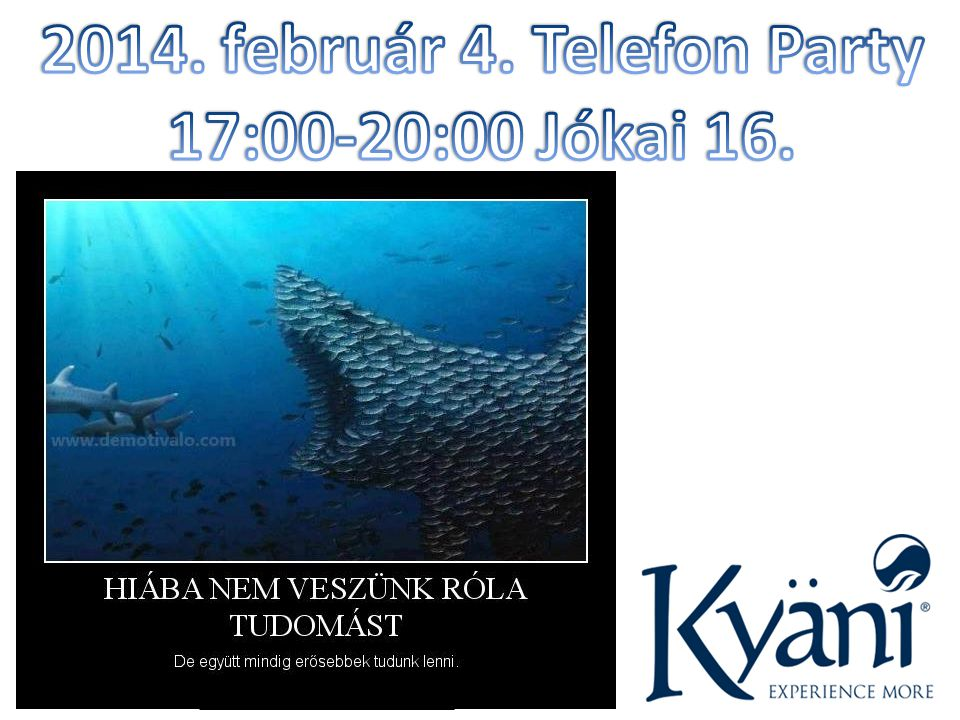 2014. február 4. Telefon Party 17:00-20:00 Jókai 16.