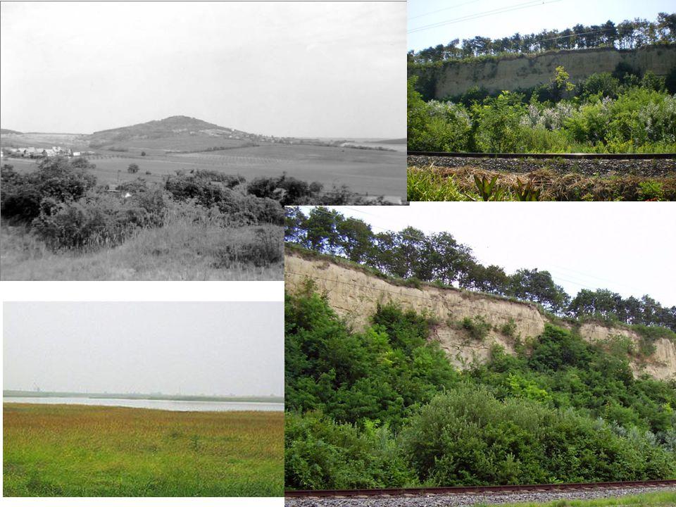 Polgárdi Szár-hegy Világosi-magaspart Sárrét TK – Sárkány-tó Kenesei-löszfal