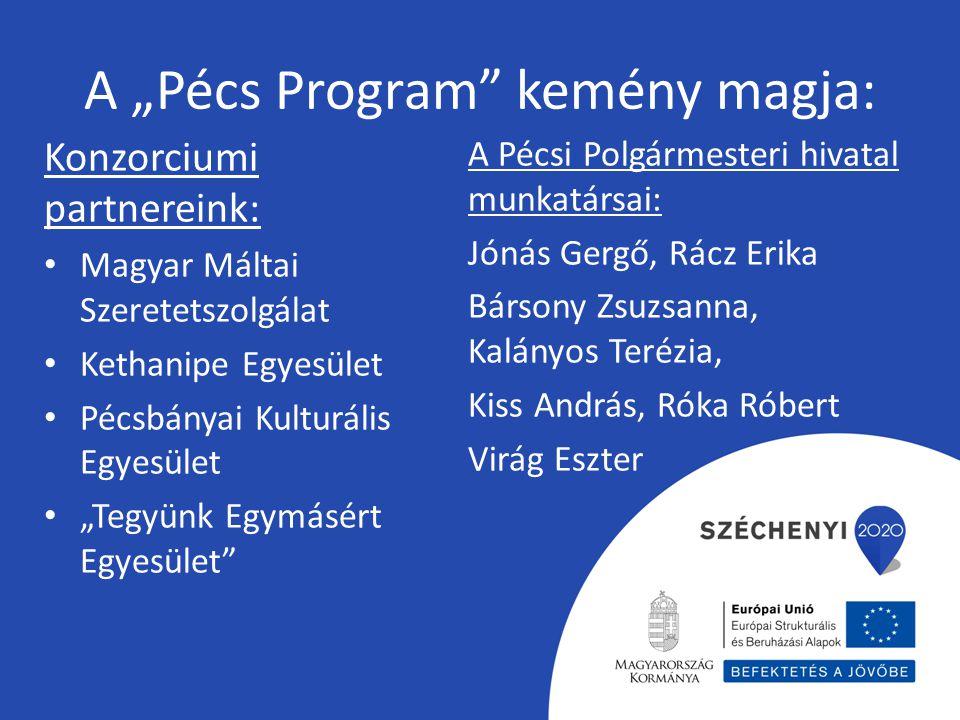"""A """"Pécs Program kemény magja:"""