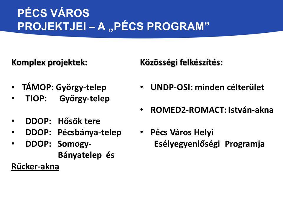 """Pécs Város Projektjei – A """"Pécs Program"""