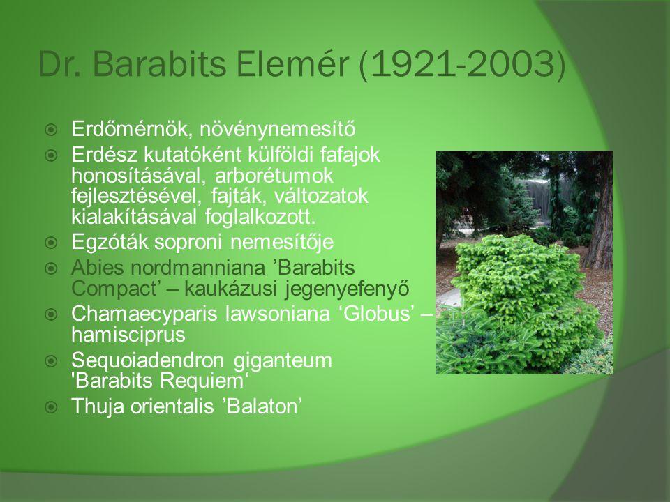 Dr. Barabits Elemér (1921-2003) Erdőmérnök, növénynemesítő