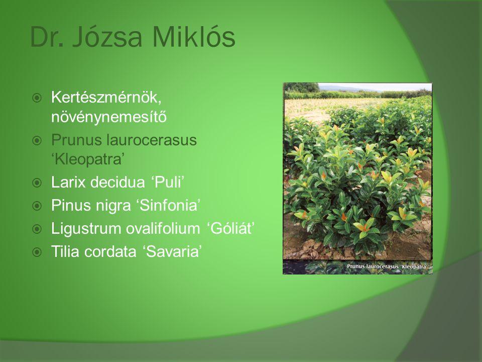 Dr. Józsa Miklós Kertészmérnök, növénynemesítő