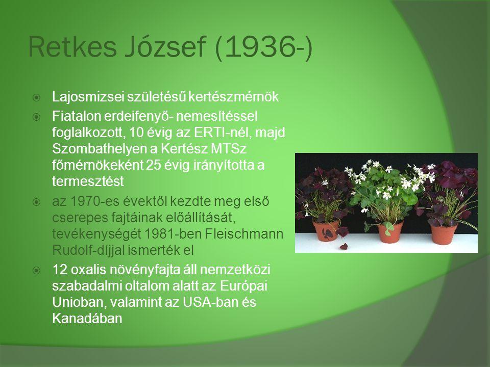 Retkes József (1936-) Lajosmizsei születésű kertészmérnök