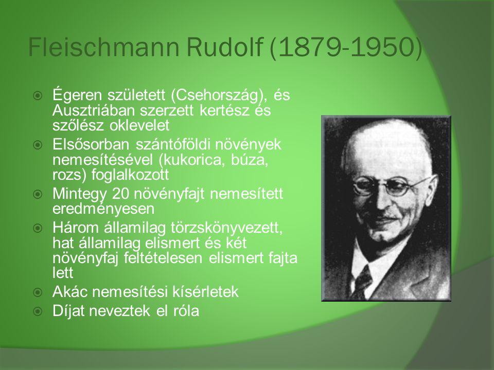 Fleischmann Rudolf (1879-1950)