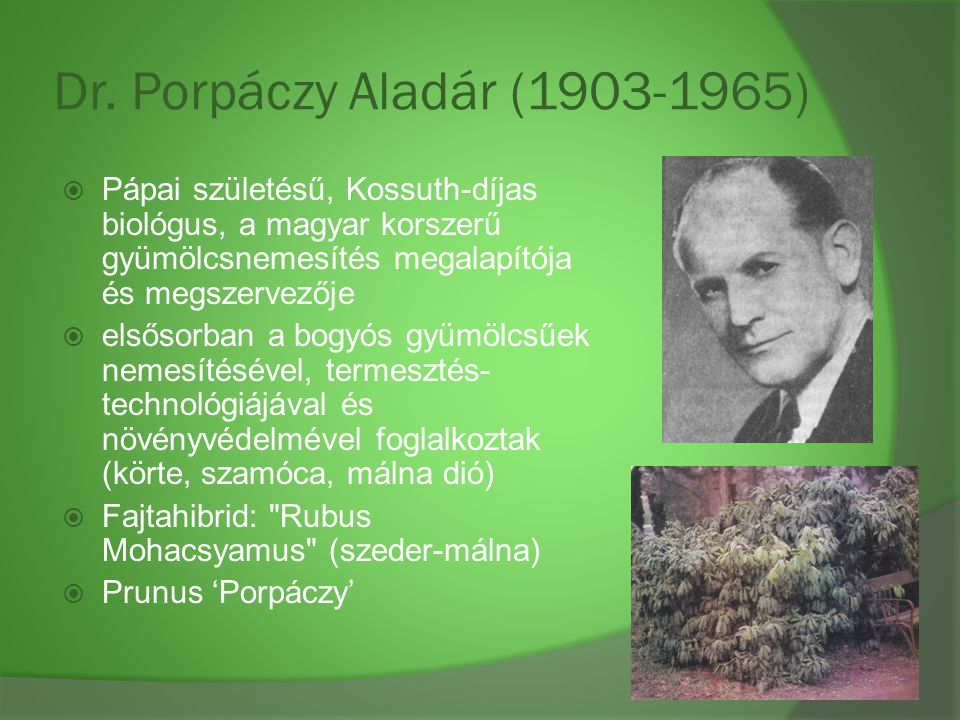 Dr. Porpáczy Aladár (1903-1965) Pápai születésű, Kossuth-díjas biológus, a magyar korszerű gyümölcsnemesítés megalapítója és megszervezője.
