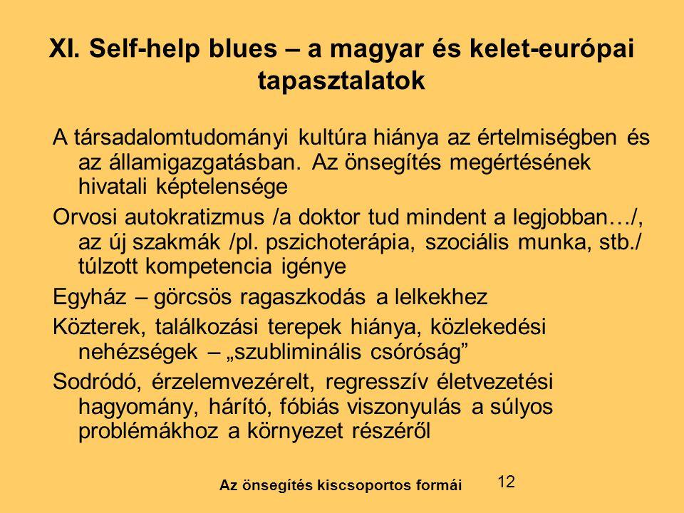 XI. Self-help blues – a magyar és kelet-európai tapasztalatok