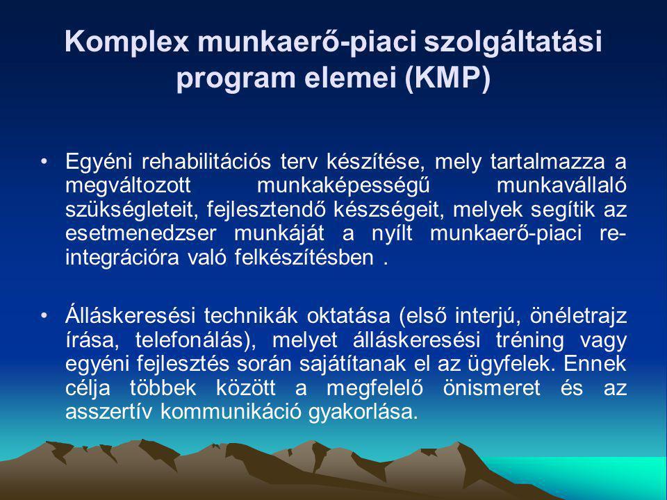 Komplex munkaerő-piaci szolgáltatási program elemei (KMP)