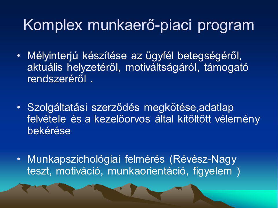 Komplex munkaerő-piaci program
