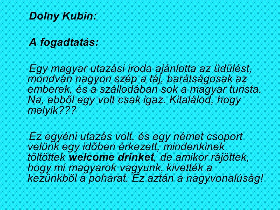 Dolny Kubin: A fogadtatás: