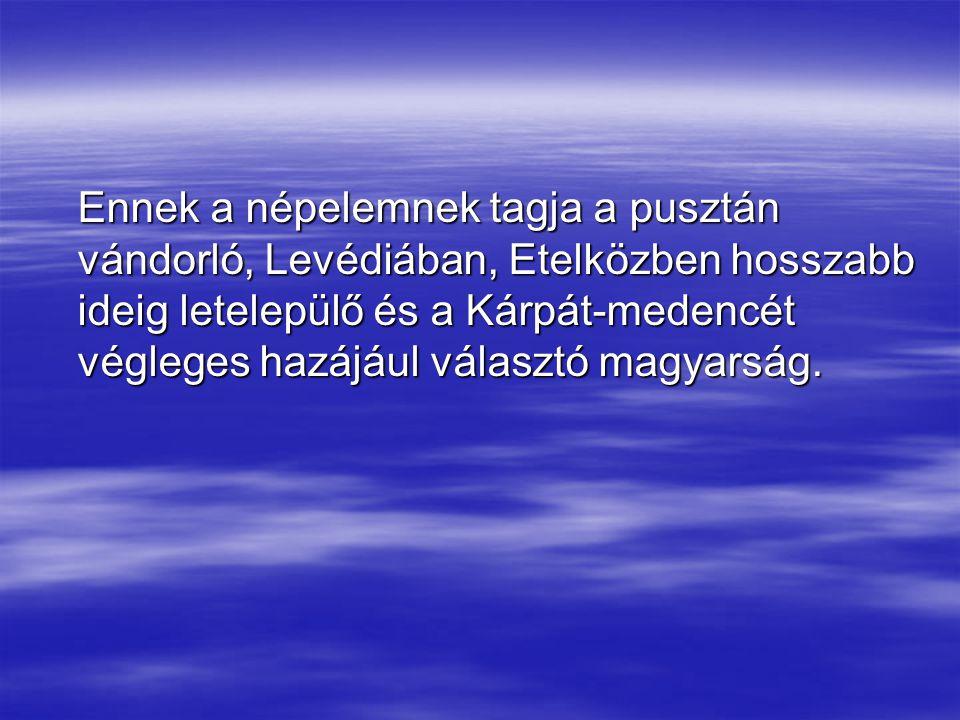 Ennek a népelemnek tagja a pusztán vándorló, Levédiában, Etelközben hosszabb ideig letelepülő és a Kárpát-medencét végleges hazájául választó magyarság.