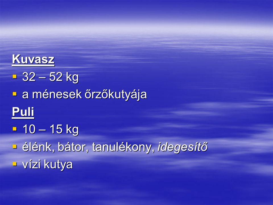 Kuvasz 32 – 52 kg. a ménesek őrzőkutyája. Puli. 10 – 15 kg. élénk, bátor, tanulékony, idegesítő.