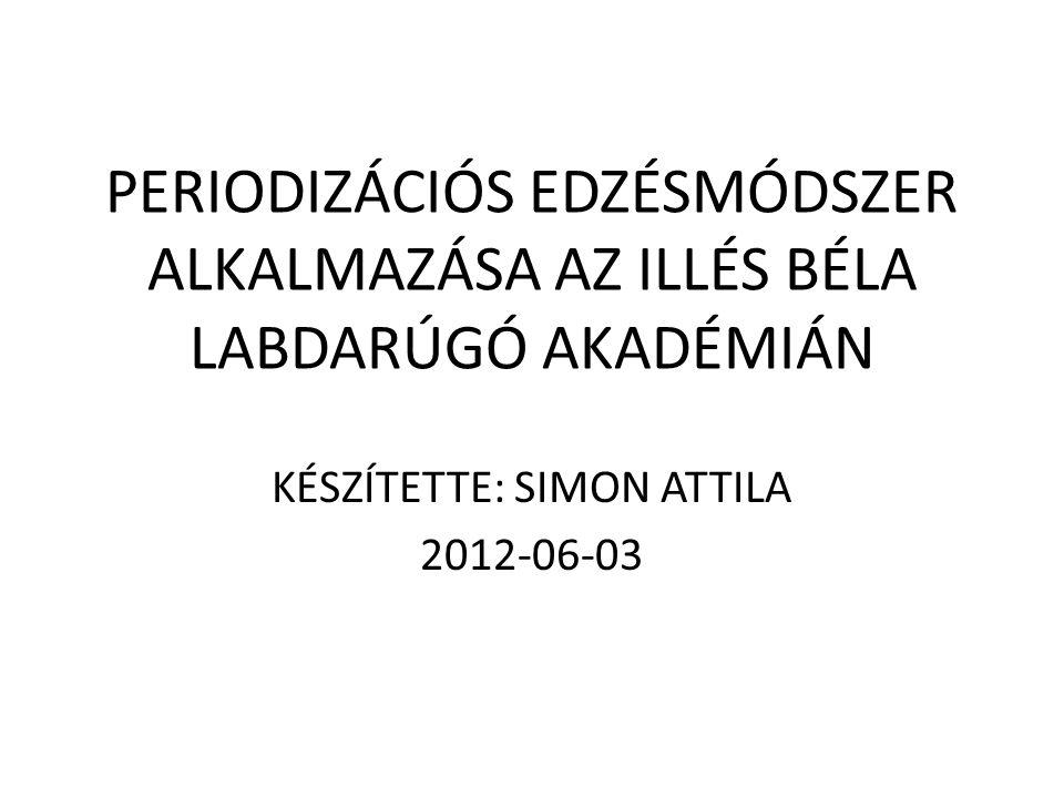 KÉSZÍTETTE: SIMON ATTILA 2012-06-03