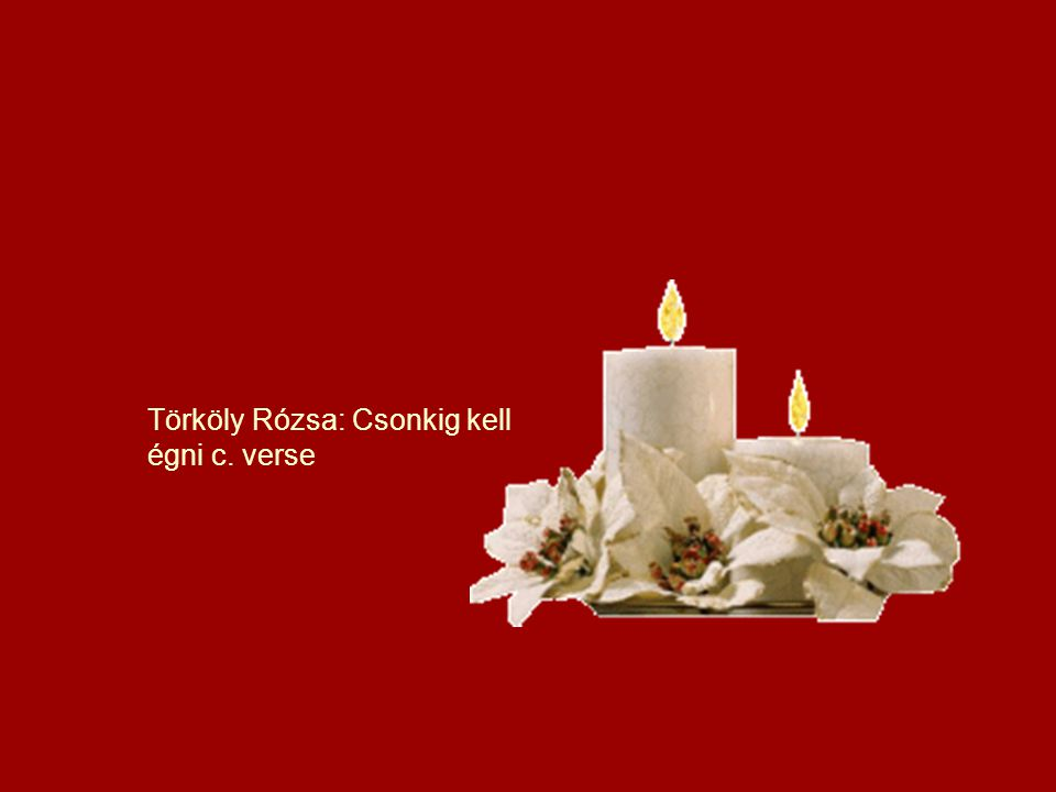 Törköly Rózsa: Csonkig kell égni c. verse