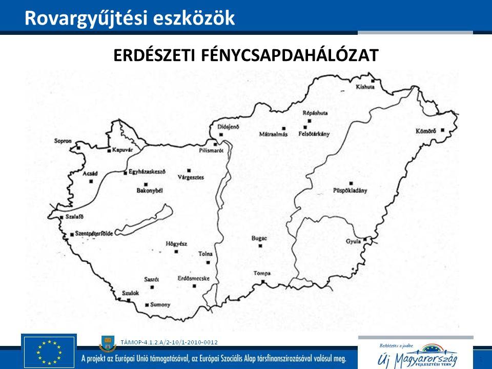 ERDÉSZETI FÉNYCSAPDAHÁLÓZAT