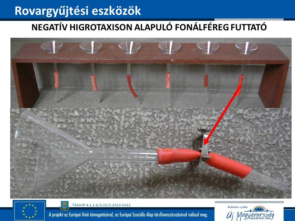 NEGATÍV HIGROTAXISON ALAPULÓ FONÁLFÉREG FUTTATÓ