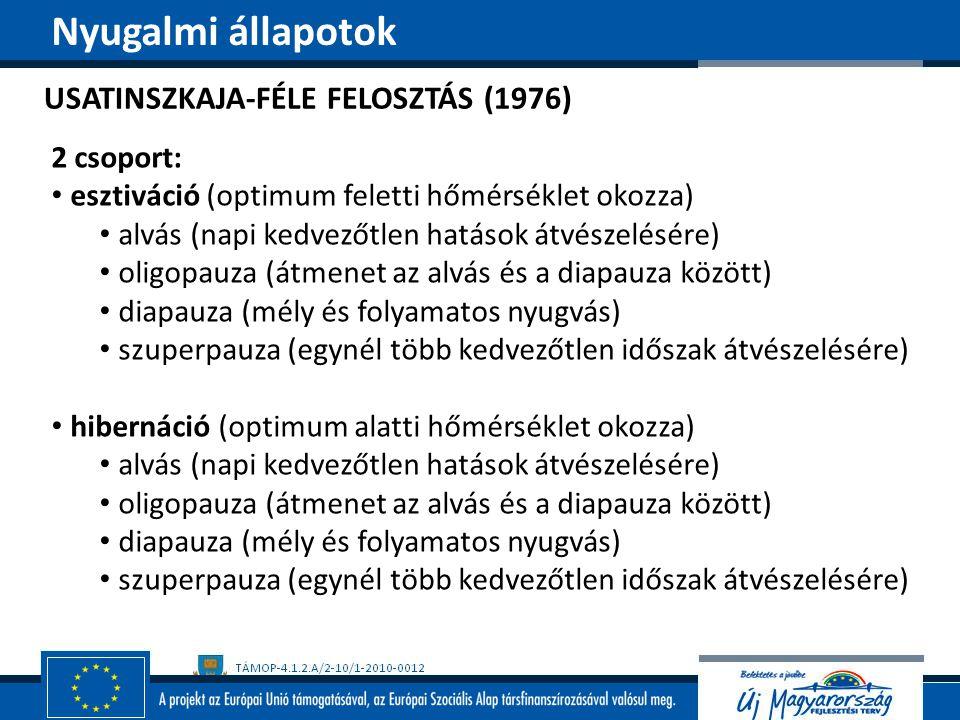 Nyugalmi állapotok USATINSZKAJA-FÉLE FELOSZTÁS (1976) 2 csoport: