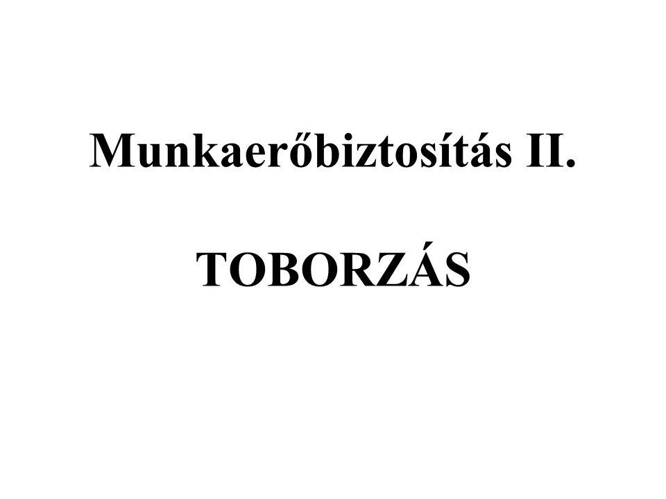 Munkaerőbiztosítás II. TOBORZÁS