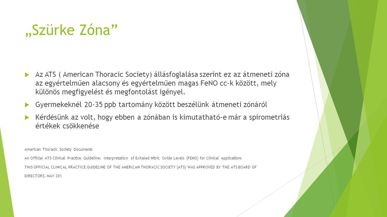 """""""Szürke Zóna"""
