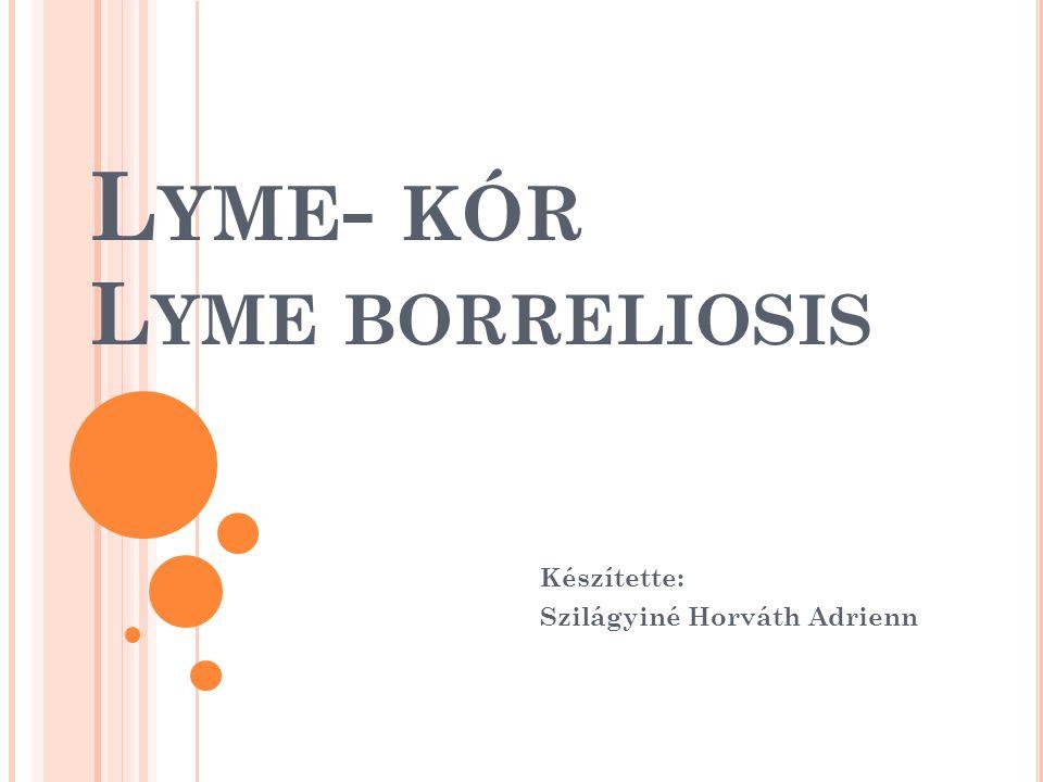 Lyme- kór Lyme borreliosis