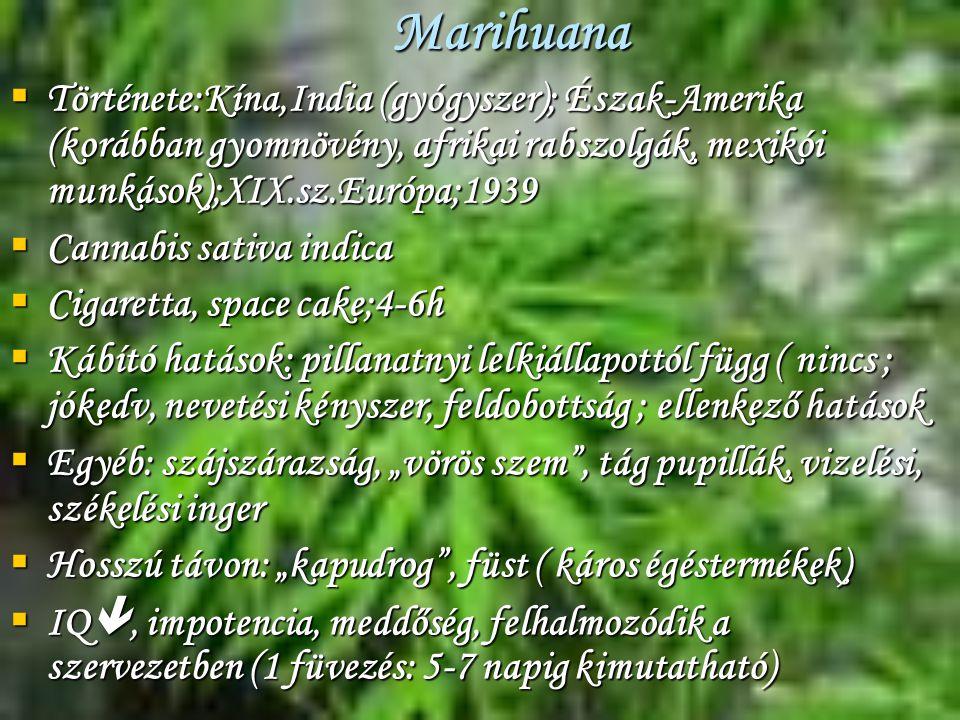 Marihuana Története:Kína,India (gyógyszer); Észak-Amerika (korábban gyomnövény, afrikai rabszolgák, mexikói munkások);XIX.sz.Európa;1939.