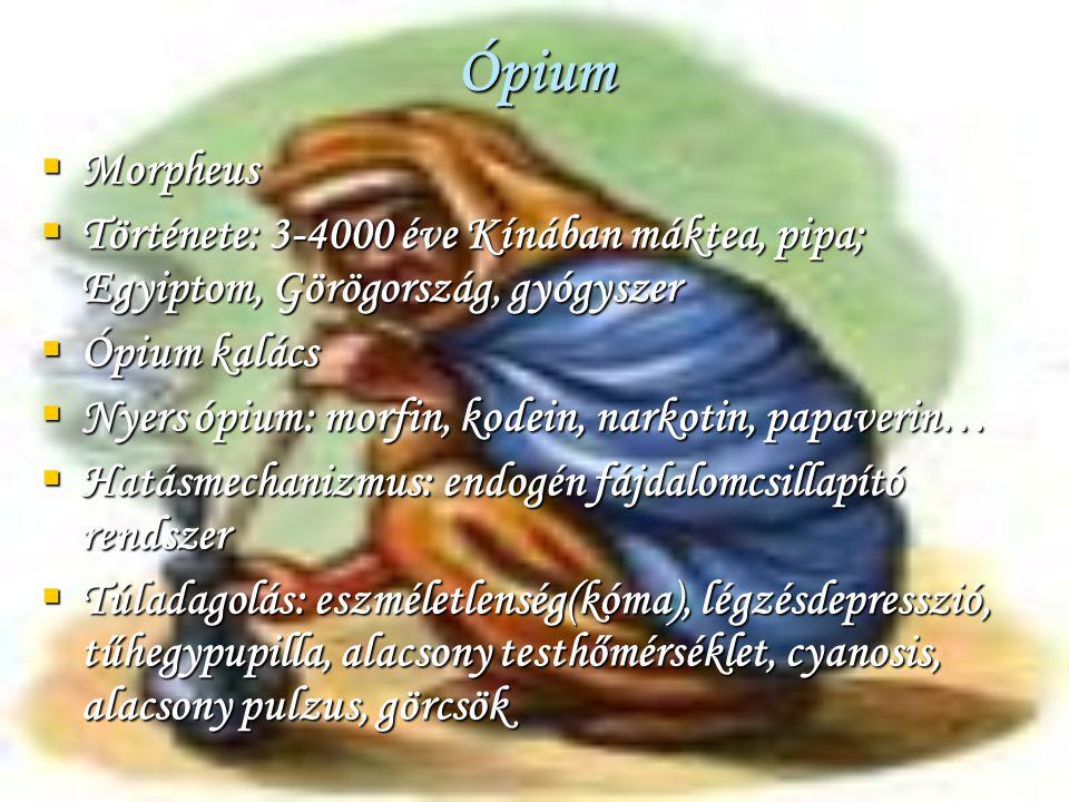 Ópium Morpheus. Története: 3-4000 éve Kínában máktea, pipa; Egyiptom, Görögország, gyógyszer. Ópium kalács.