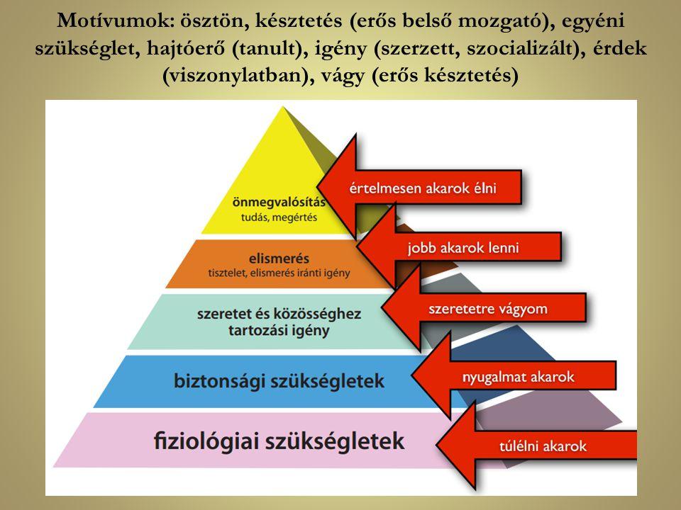 Motívumok: ösztön, késztetés (erős belső mozgató), egyéni szükséglet, hajtóerő (tanult), igény (szerzett, szocializált), érdek (viszonylatban), vágy (erős késztetés)