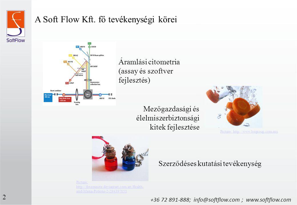 A Soft Flow Kft. fő tevékenységi körei