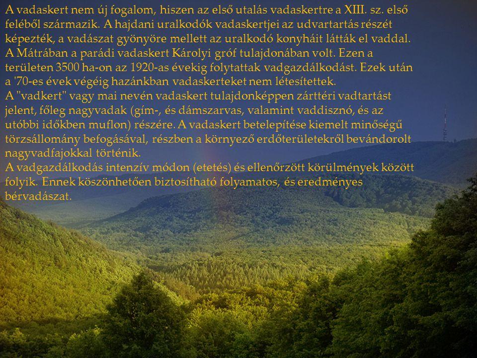 A vadaskert nem új fogalom, hiszen az első utalás vadaskertre a XIII