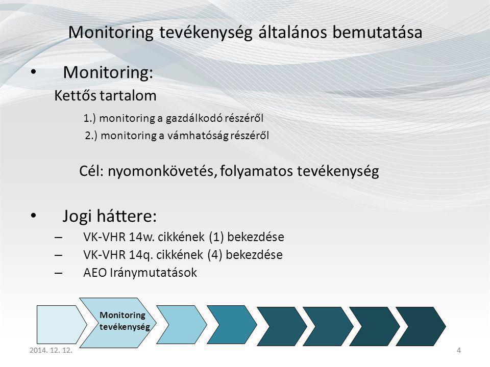 Monitoring tevékenység általános bemutatása
