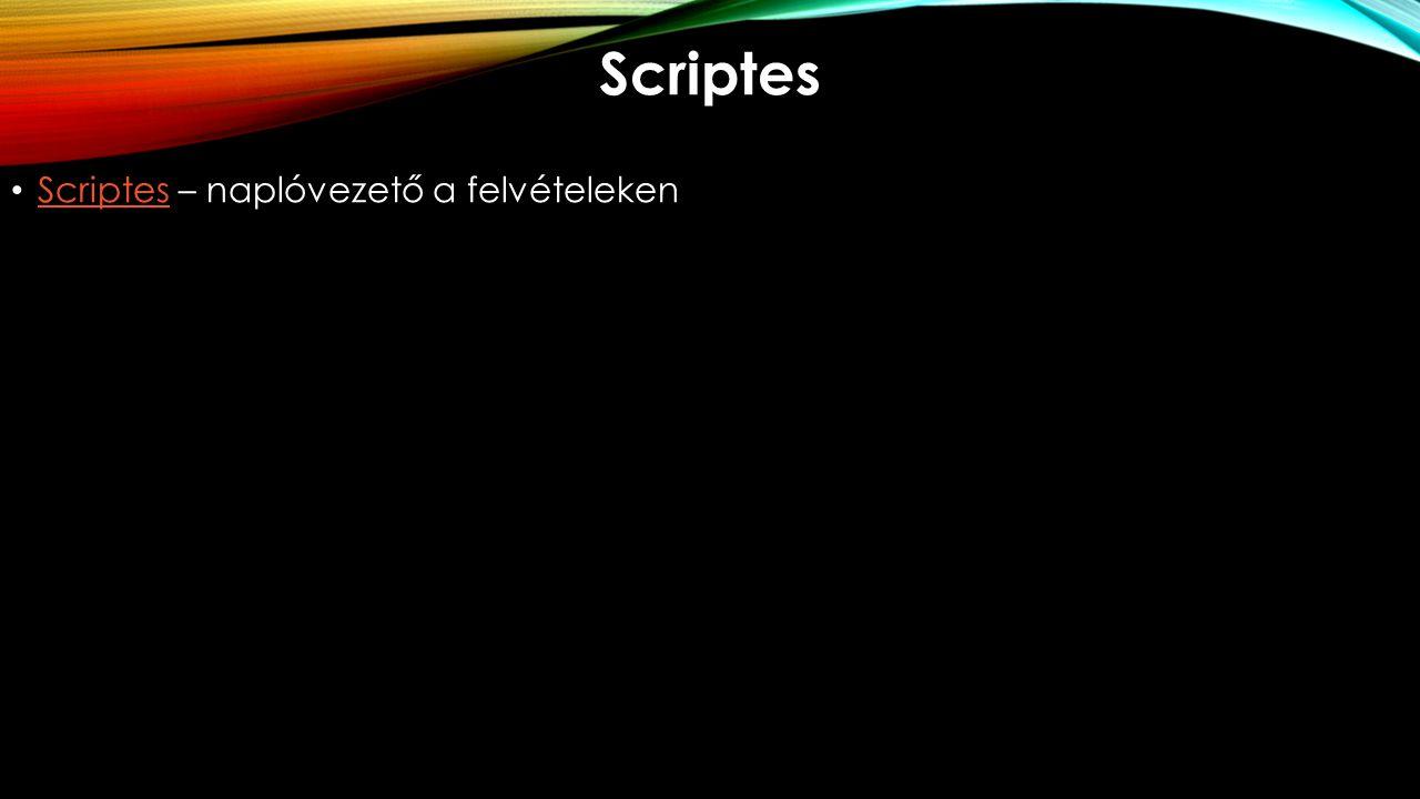 Scriptes Scriptes – naplóvezető a felvételeken