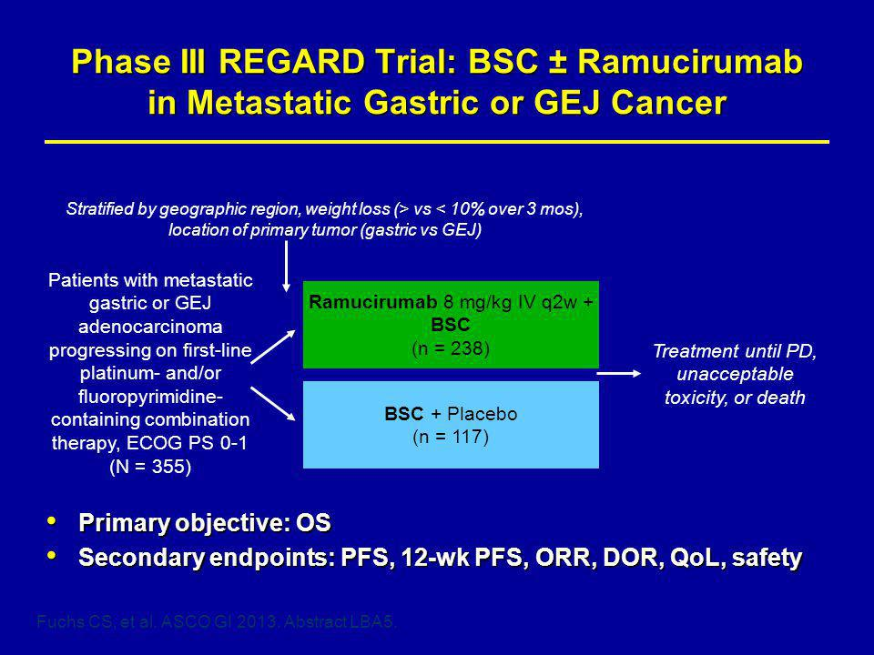 Phase III REGARD Trial: BSC ± Ramucirumab in Metastatic Gastric or GEJ Cancer