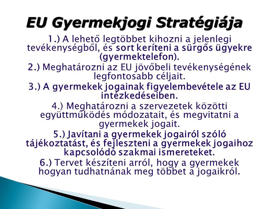 2.) Meghatározni az EU jövőbeli tevékenységének legfontosabb céljait.