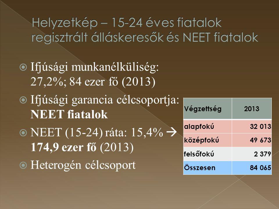 Ifjúsági munkanélküliség: 27,2%; 84 ezer fő (2013)