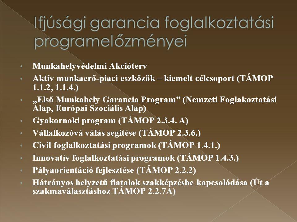 Ifjúsági garancia foglalkoztatási programelőzményei