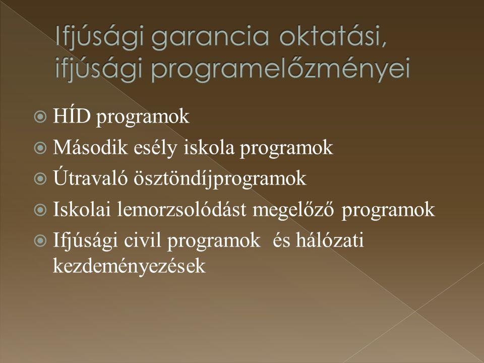 Ifjúsági garancia oktatási, ifjúsági programelőzményei