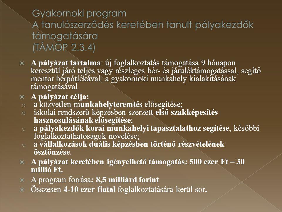 Gyakornoki program A tanulószerződés keretében tanult pályakezdők támogatására (TÁMOP 2.3.4)