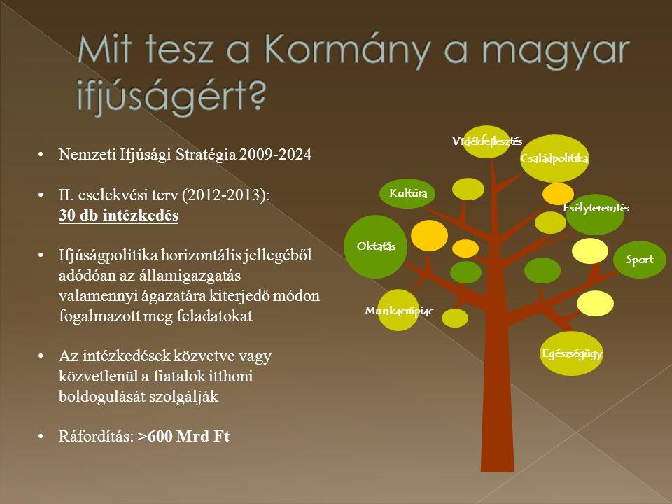 Mit tesz a Kormány a magyar ifjúságért